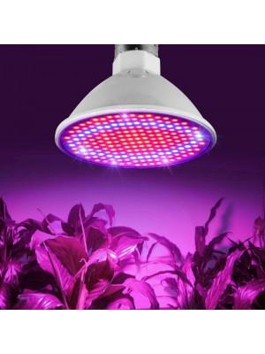LED GROW BASIC žiarovky (9)