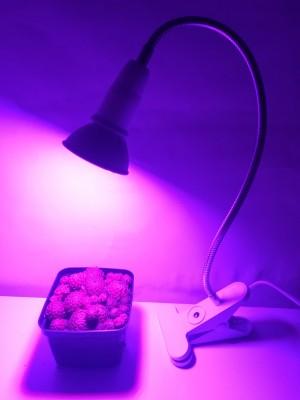 BASIC LED GROW lampa na všetky rastliny,fialová, E27, 6W, HB-GT01