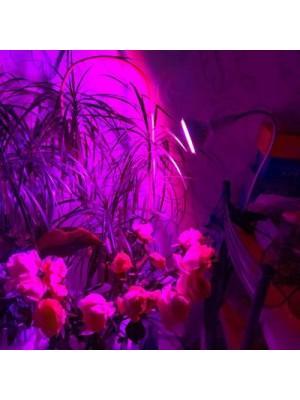 PROFI LED GROW lampa na všetky rastliny, ružovo-modrá, E27, 7W
