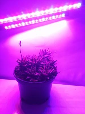 PROFI LED GROW trubicová lampa na všetky rastliny, 18W, dvojramenná