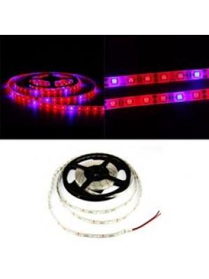 LED GROW pásik pre rast rastlín, SMD 5050, 5m, 60 led/m, 14,4W/m vodotesný, vysoko svietivý pás